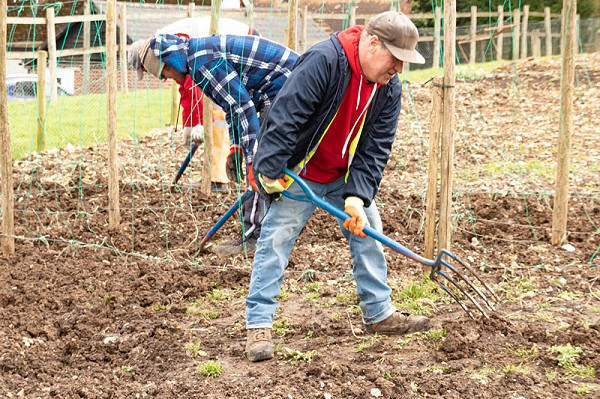 Horticulture, garden maintenance for adults with learning disabilities