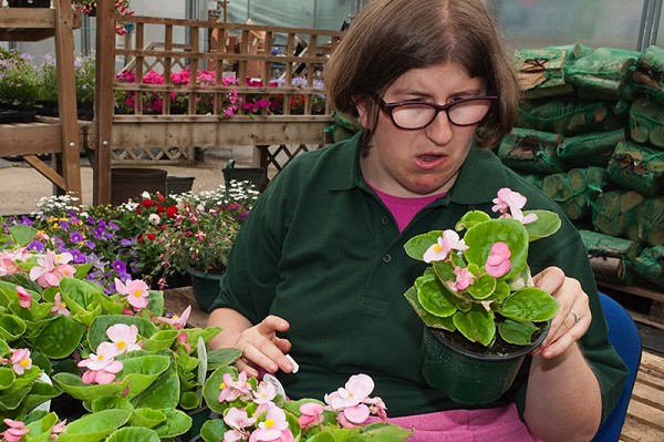 Work opportunities in a garden centre for adults with learning disabilities
